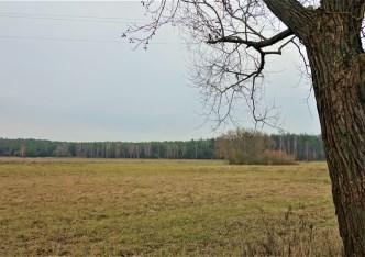 działka na sprzedaż - Nowa Wieś Wielka (gw), Dobromierz
