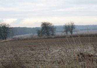 działka na sprzedaż - Sicienko (gw), Dąbrówka Nowa